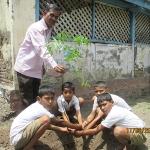 tree-plantation-with-student