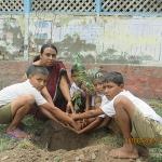 tree-plantation-with-teachers